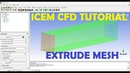 ICEM CFD Extrude Mesh Basic Tutorial 5