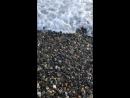 Море,море)