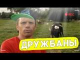 Мужчина спас этого быка от смерти, и вот чем он ему отплатил!