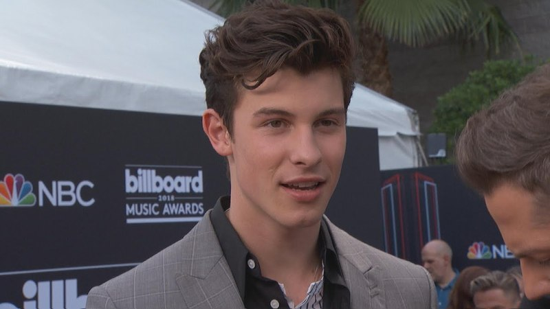 Shawn Mendes Talks Performing With T.Swift on 'Reputation' Tour | E! Live from the Red Carpet