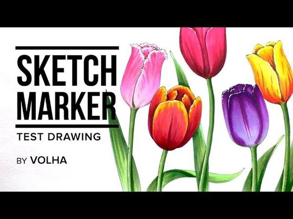 Sketchmarker test drawing 6 / Рисую маркерами Sketchmarker тюльпаны