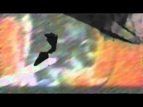 Ray Kandinski - Between [Baka Gaijin]