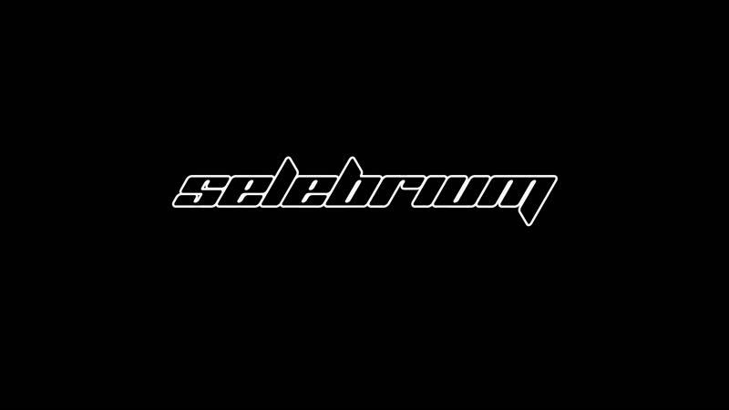 Selebrium в деле