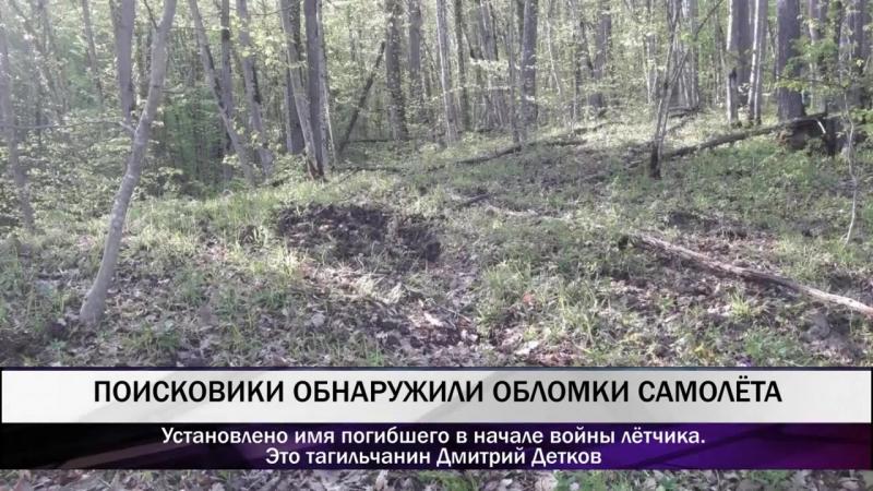 Поисковики обнаружили обломки самолета тагильчанина