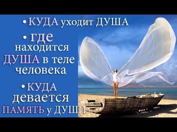 Куда уходит Душа Где Душа находится в теле человека Память Души Магия