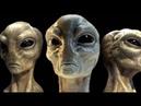 США взяли в плен 4-х пришельцев,пока язык,на котором они говорят,никто не понимает.Документальный
