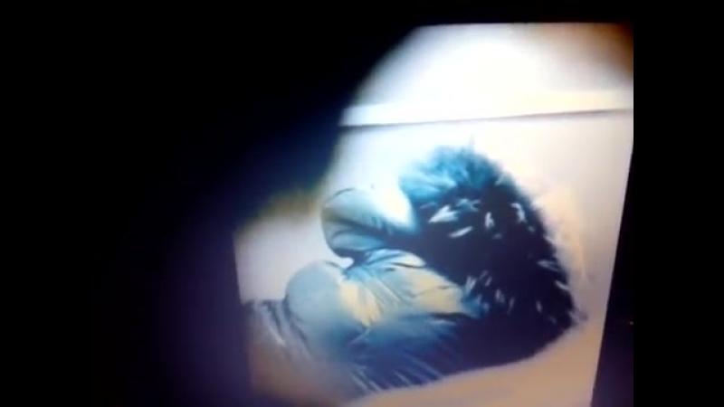 скрытая камера в женском туалете-249