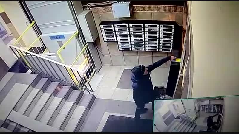 Подъездные ворюги крадут даже корзинки для мусора. Город Московский 3 микрорайон дом 16.
