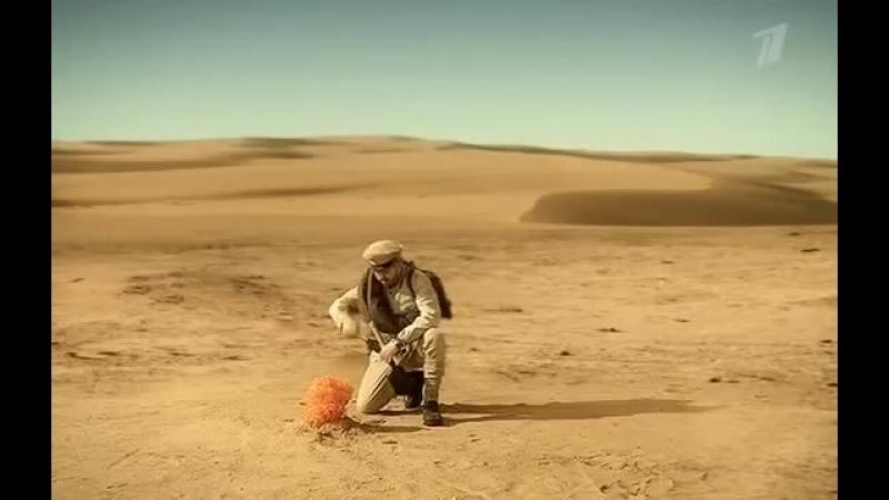 Большая разница - Белое солнце пустыни.mp4