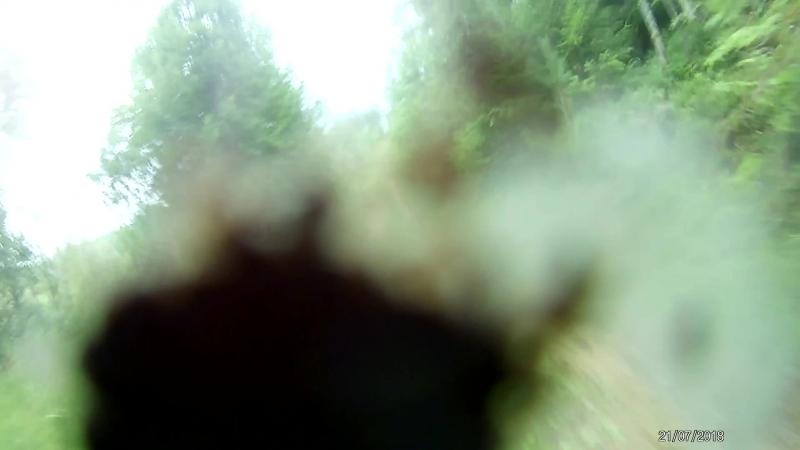 ОРЕХОВЫЙ ВЕЛОМАРАФОН -21 июля 2018 на 31 км видео с задней камеры )) 6 часть