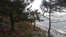 Нудистский пляж зимой. Балкер Rio на мели. Nudist beach in winter. Bulk carrier Rio aground.