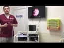 Эндоскопическую стойку в каждую ветеринарную клинику