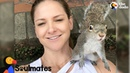 Squirrel Keeps Visiting Her Human Mom After Her Release | The Dodo Soulmates