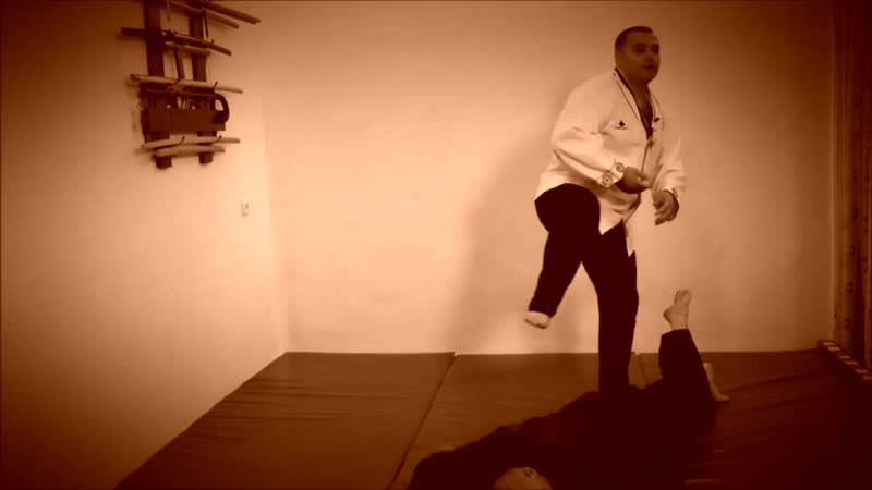 Rebel Hapkido Series 합기도 By Vidadi Hajiyev (55)