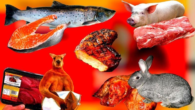 Виды мяса какие виды мяса вредны а какие нет