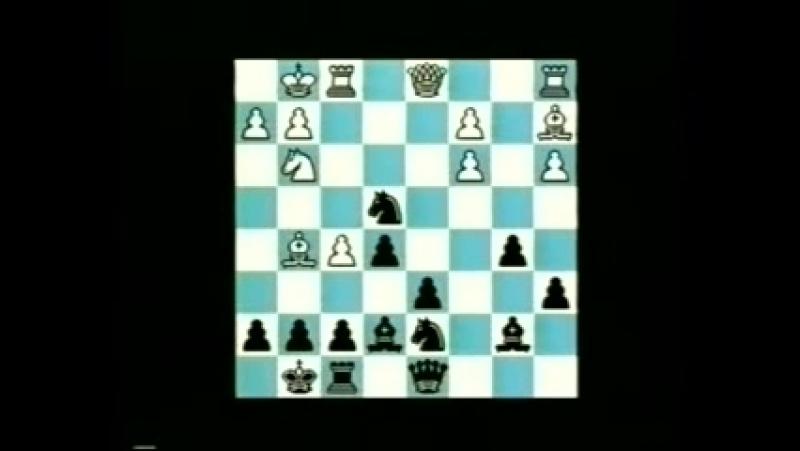Сицилианская Защита. Вариант Найдорфа (1.e4 c5 2.Kf3 d6 3.d4 cd 4.K:d4 Kf6 5.Kc3 a6) / Foxy Openings №38: Najdorf