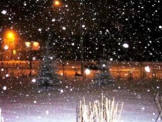 Рома Жуков. Первый снег