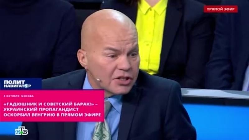 Гадюшник и советский барак Ковтун набросился на Венгрию