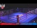 Всероссийские соревнования по боксу Памяти ЗТ СССР Б Н Грекова среди юношей 2005 2006г р день 6