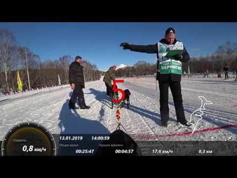 Чемпионат Камчатского края по ездовому спорту 12-13 января 2019