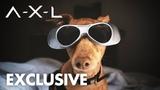 AXL Tuna Gets AXL Vision Global Road Entertainment