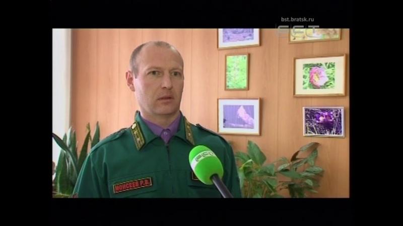 Министерство лесного комплекса объявило набор общественных инспекторов по охране окружающей