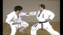 Karate Kihon Ippon Kumite 8 16