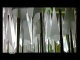Хор из оперы Набукко Дж.Верди