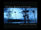 Carbon Based Lifeforms - Neurotransmitter