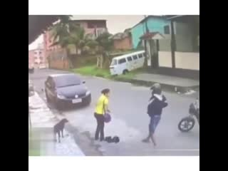 Robber brazil
