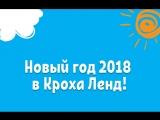 Новый год 2018 ЧДС