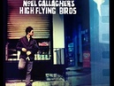 Noel Gallagher's High Flying Birds - Stop The Clocks