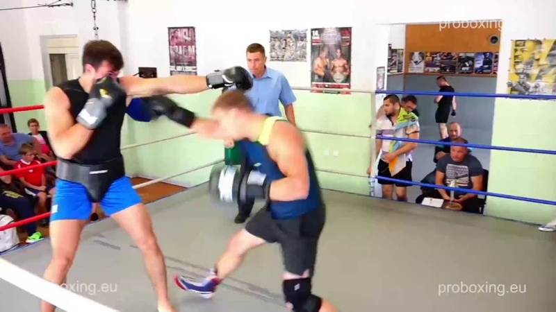 26.08.2016 Real Boxing Show proboxing.eu