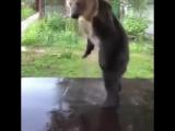 Petr Kiryakov поделился видео.