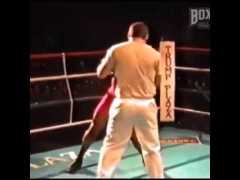 Mike Tyson on mitts