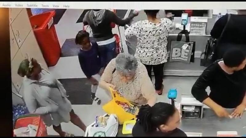 Un singe et sa petite macaque vole une femme blanche