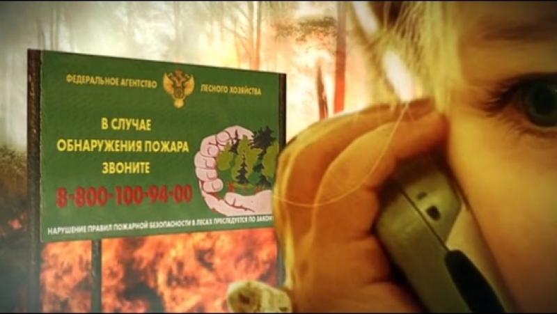 Уважаемые жители В Петербурге установилась жаркая погода будьте аккуратны при походе в лес