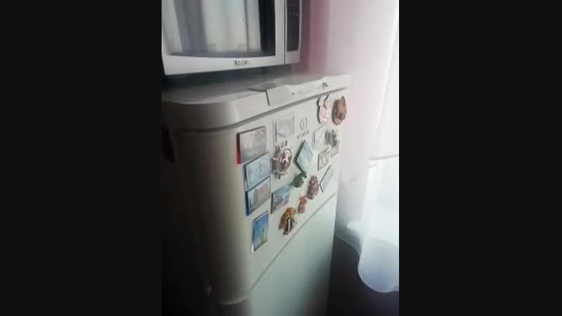 Ремонт холодильника indesit на дому в омске