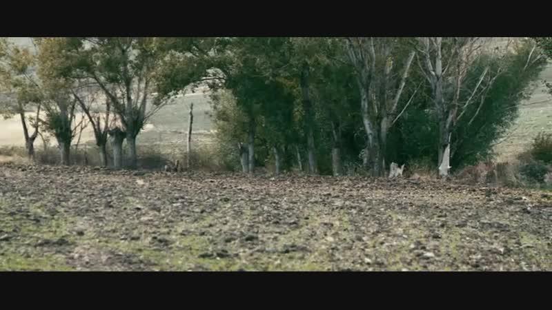 ОДНАЖДЫ В АНАТОЛИИ (2011) - криминальная драма. Нури Бильге Джейлан 720p
