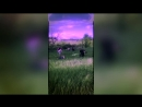 Задира™|Vine|ОФФ|〤Капает,капает〤 5