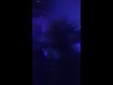 День города..подруга пригласила на концерт Софии Ротару ??но это был концерт Стаса Пьехи?????✌️✌️✌️✌️