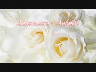 Настя + Андрей