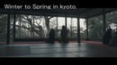Winter to Spring in kyoto.