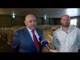 Армения запускает проект майнинга криптовалюты с компанией Omnia