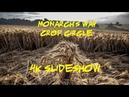 Monarch's Way Crop Circle 4K Slideshow