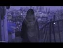 ✖ оченьхотела ep 15 16 MV my mister