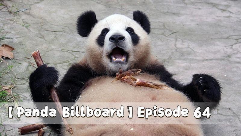 【Panda Billboard】Episode 64 | iPanda