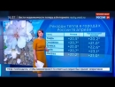Россия 24 Погода 24 В Москве рекордное потепление Россия 24
