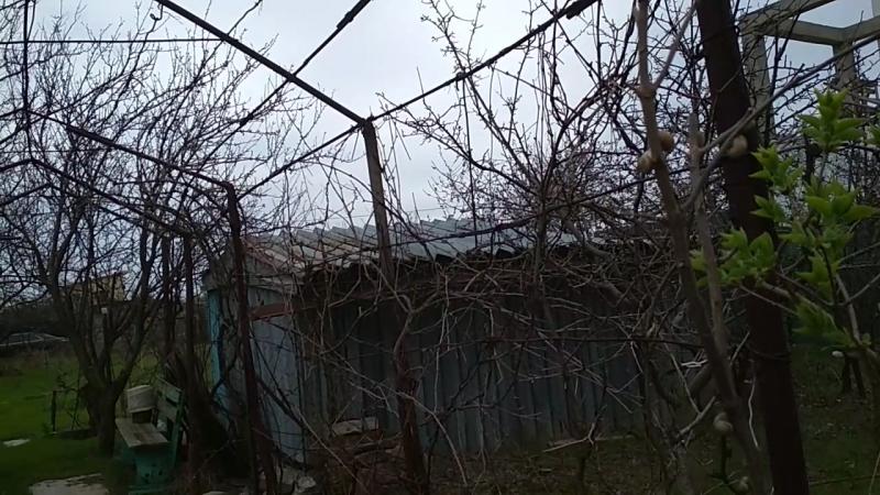 Участок ветеран 9 соток Черноморск-Ильичевск