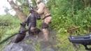 Cão da Polícia Militar de Blumenau localiza ladrões em matagal